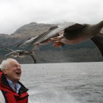 Nature: Attenborough's Life Stories