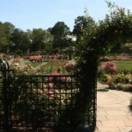 The Peggy Rockefeller Rose Garden was inducted into the Rose Garden Hall of Fame in 2010.