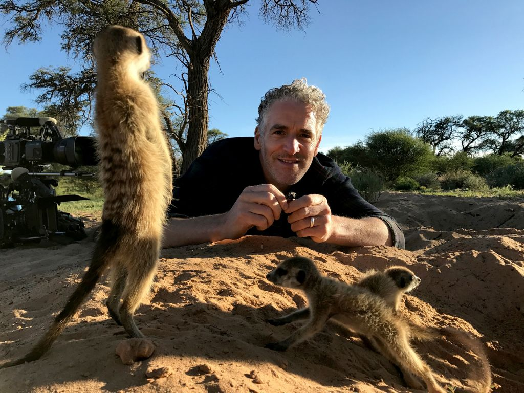At the Kalahari Meerkat Project in South Africa, Gordon Buchanan shows the meerkat camera crew the specially-designed cameras they will soon be wearing.