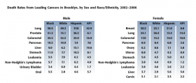 This chart shows the percentage of death by Cancer in Brooklyn arranged by Sex and Ethnicity from 2002 to 2006. This chart was completed by SUNY Downstate Medical Center.