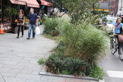 Bioswales City Sidewalk Green Street green design