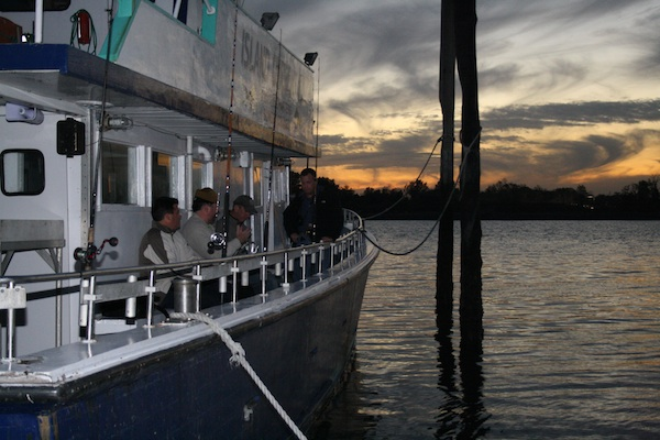 Warm water fish invade new york city 39 s waters for City island fishing boats