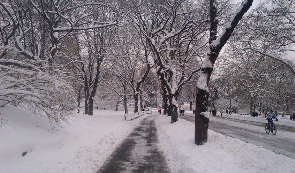 Nemo Blankets NYC and Region in Snow