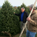 New Jersey Christmas Trees Heading to The White House