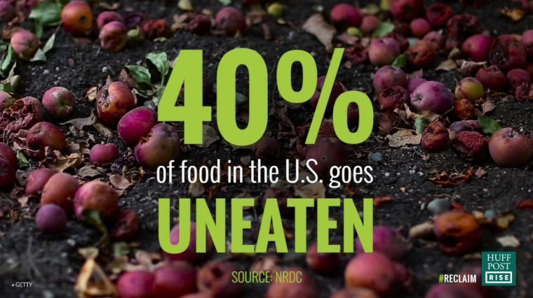 Food Wasted While People Go Hungry