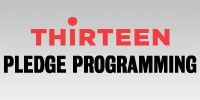 THIRTEEN Pledge Programming