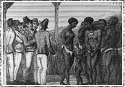 An illustration depicting slaves exposed for sale